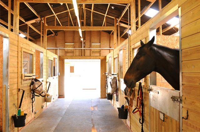 Tack room inside beautiful horse barn