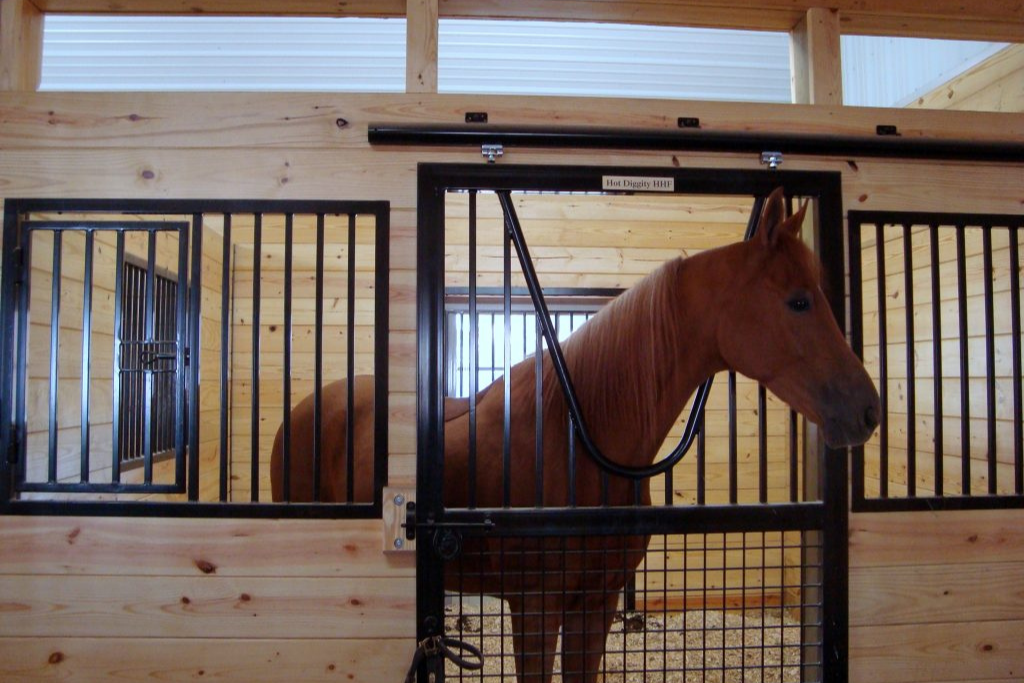 horse stall for sale